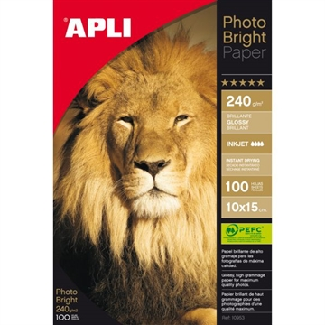 Apli Photo Bright Pro 10X15 (100) 240G
