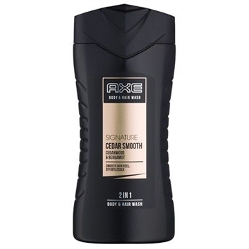 Axe Shower Gel 250 ml 2 In 1 Signature